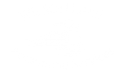Wilson Lake Accounting